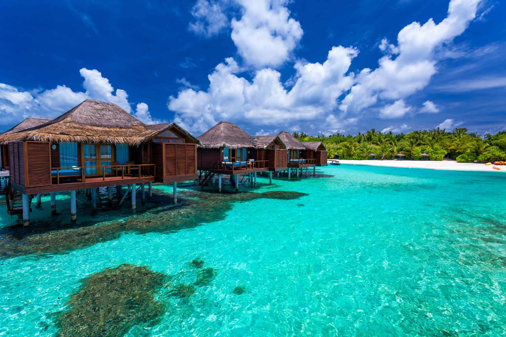 luxury ocean travel agents